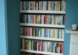 Book Shelves and log stack